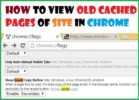 see old cached page of any website in chrome offline mode