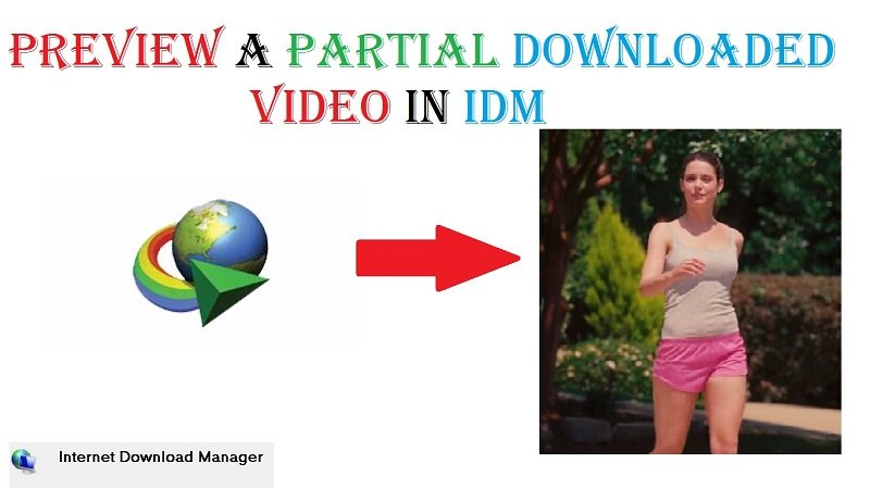 preview a partial downloaded video in IDM