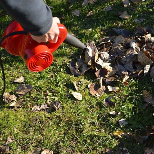Air blower Clever Garden hand tools