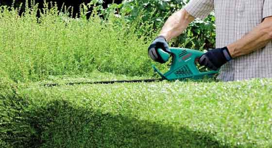 Hedge trimmer Clever Garden hand tools