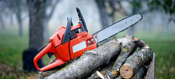 Maintenance of chainsaw