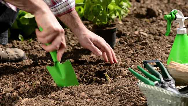 Hand digging trowel Clever Garden hand tools