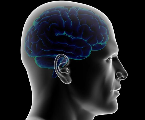 Mind Transfer and Head Transplants