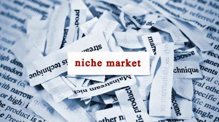 Find a Niche Market