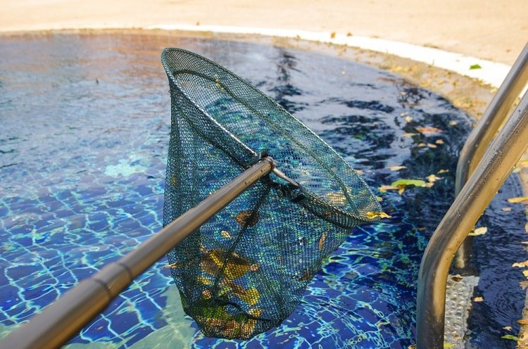 Features to Consider When Buying an Automatic Pool Cleaner