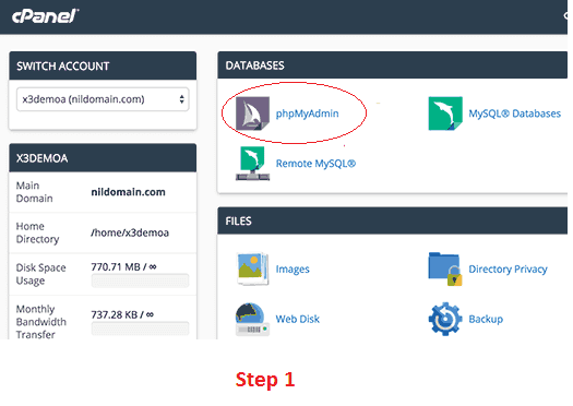 Access phpMyAdmin using cPanel