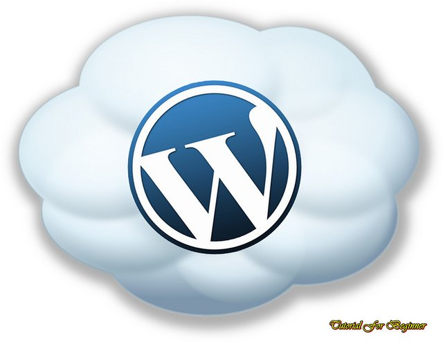 WordPress Hosting you should Choose