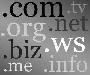 choose Right Domain for your niche