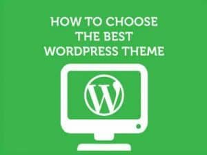 Choose the Right wp Theme