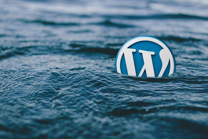 WordPress Free Themes: Is It Right