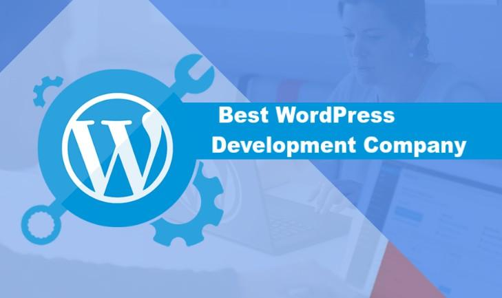 Some Tips to Find Best WordPress Development Company - MindxMaster