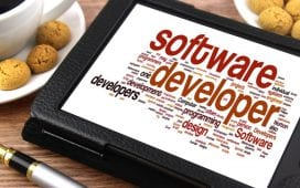 company's software development cost