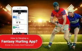 Fantasy Hurling Apps and how they hurled their way into fantasy sports.