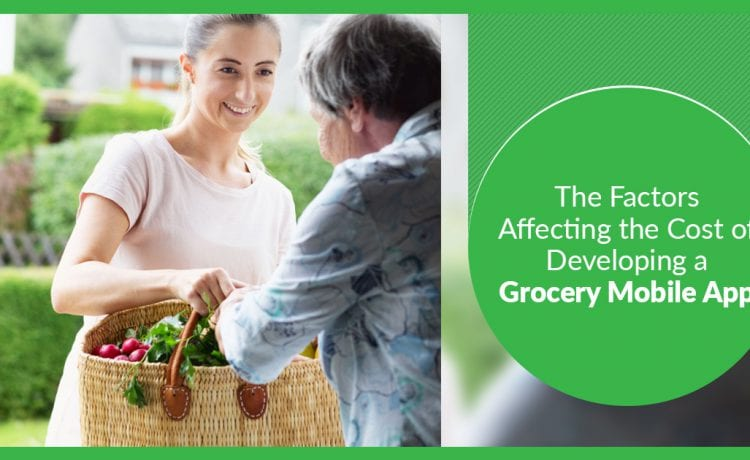 Factors Affecting the Cost of Developing a Grocery Mobile app