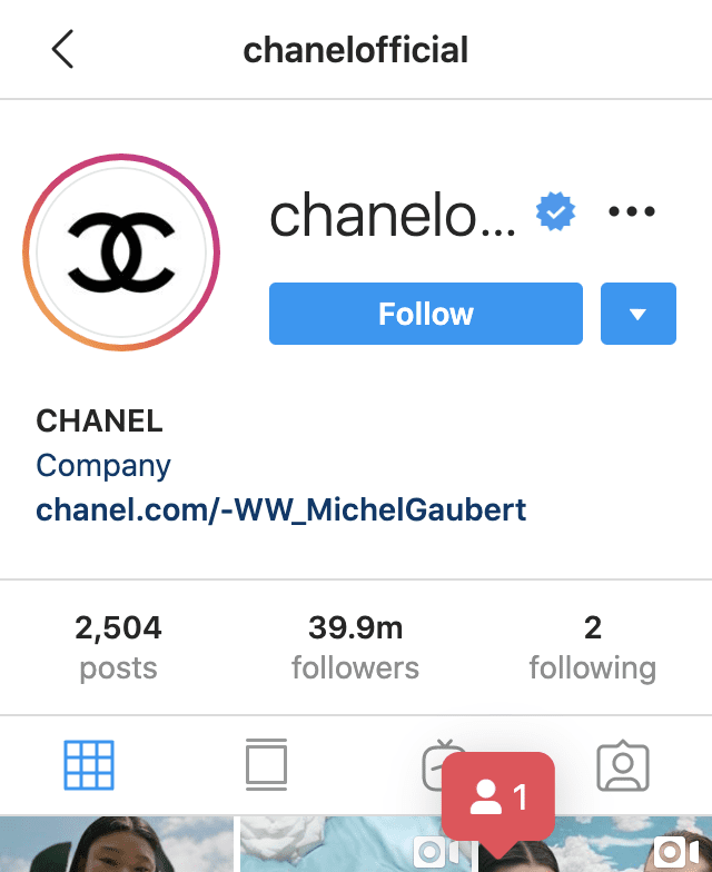 Chanel Instagram followers