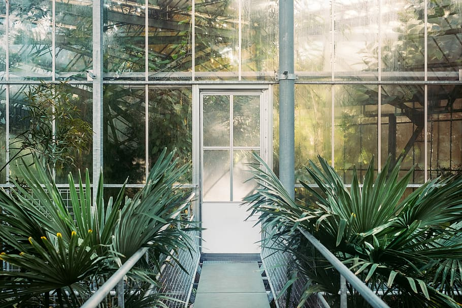 conservatory at home