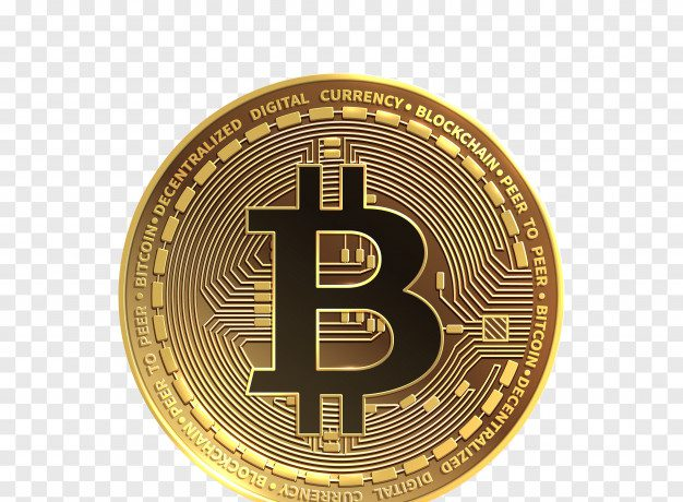 investors think about Bitcoins