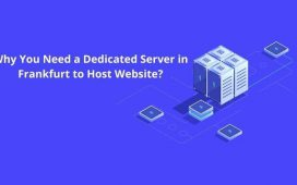Need a Dedicated Server