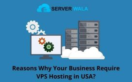 VPS Hosting in USA?