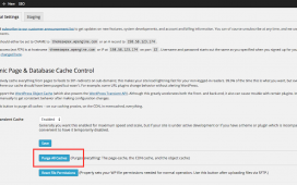 How to Clear WordPress Cache on Your Site