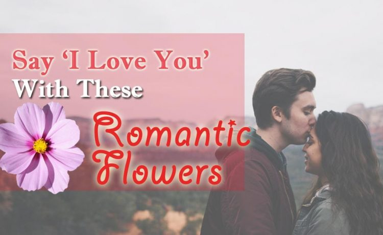 Flowers that are enough to say 'I Love You' to your partner