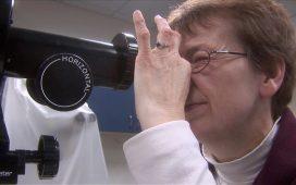 optometric industry
