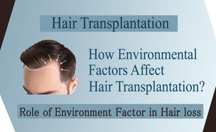 Environmental Factors Affect Hair