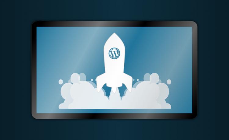WordPress Referral Software